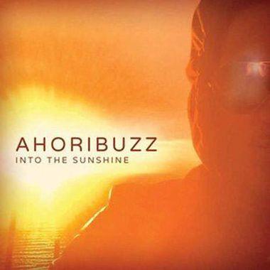 Into The Sunshine
