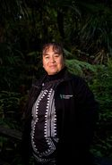 Waipoua Forest – Please Protect our Ngahere
