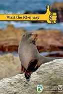 Visit The Kiwi Way